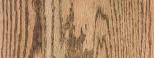 Bona Classic Twig Stain Floor Master